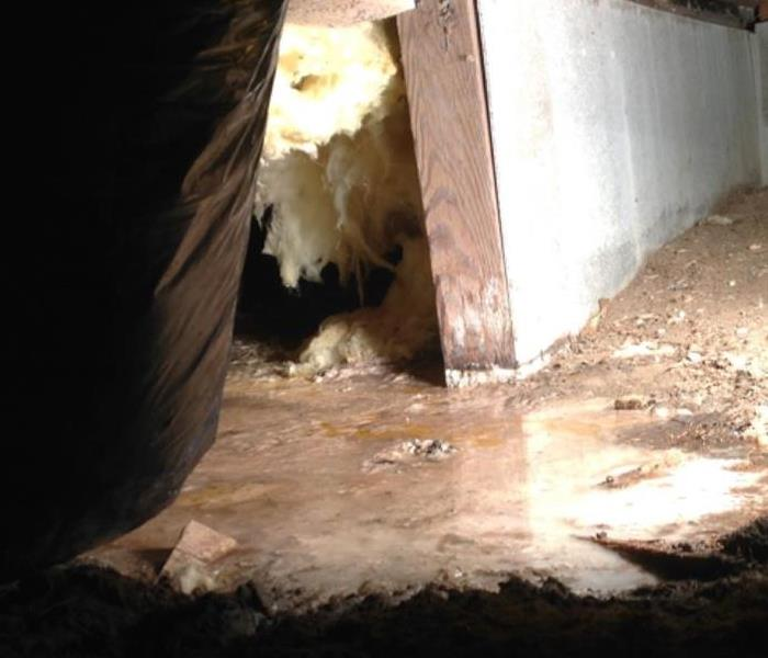 Septic Backup in Crawl Space