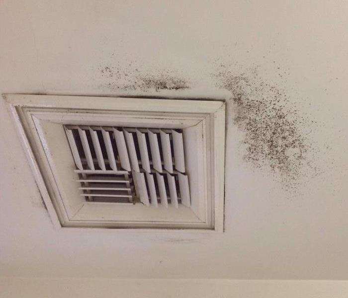 General 8 Indicators that Your Air Ducts Require a Professional Cleanup