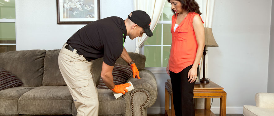 Sandwich, MA carpet upholstery cleaning
